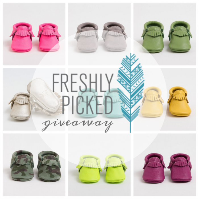 Freshly Picked, Frenchie and a Giveaway