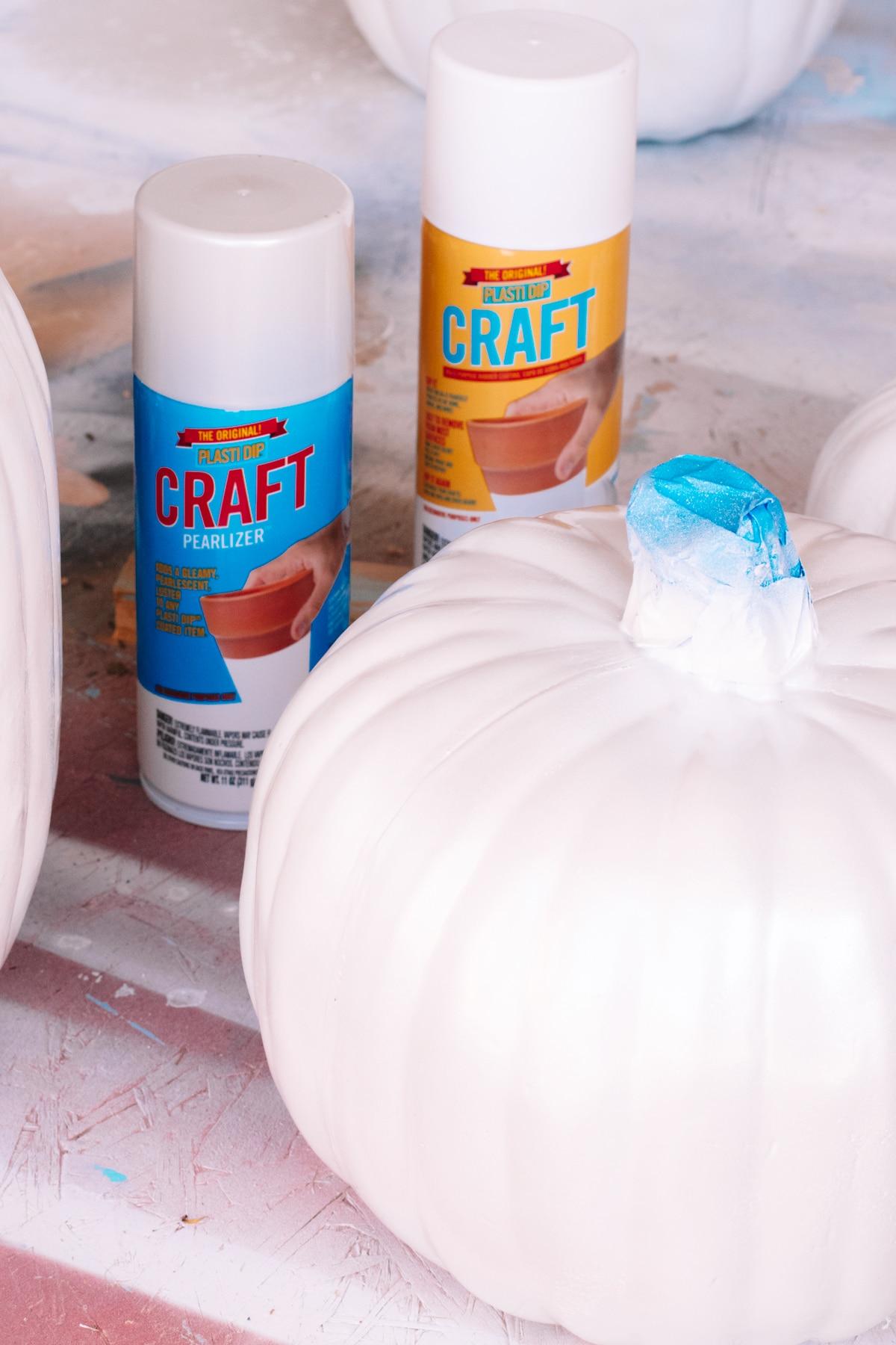 plastic dip craft