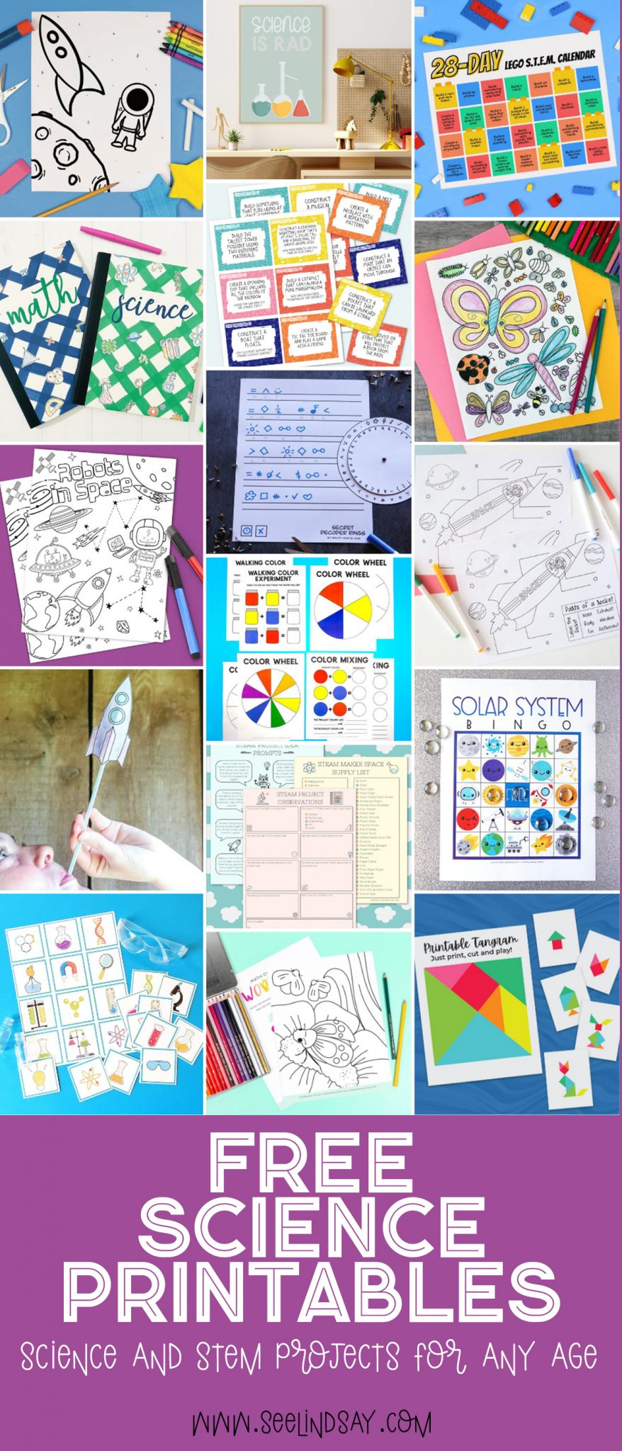 free science and stem printables